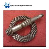 포드 트렁크 나선형 비스듬한 기어를 위한 BS6126 7/36 정밀도 금속 나선 비스듬한 기어 전송 기어