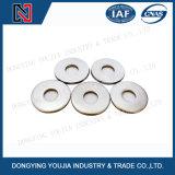 Rondelle ordinaire de l'acier inoxydable DIN9021 (200HV) (grande) (200HV)