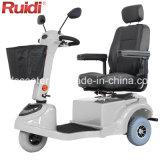 3車輪の移動性のスクーターの電気スクーター400WのセリウムTUV