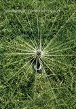 Bicos de sprinklers raios durável para irrigação de Jardim