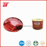 La alta calidad de pasta de tomate (en lata 2,2 kg) con Tmt Marca