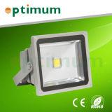 Projecteur à LED Dimmible 30W