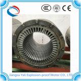 Explosiebestendige Asynchrone Motor In drie stadia de Met hoog voltage van Yb