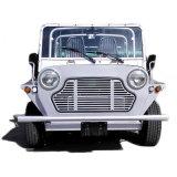 Véhicule guidé d'autocar de touristes d'engine d'essence