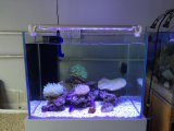 la barriera corallina registrabile 18W coltiva gli indicatori luminosi dell'acquario della pastella LED