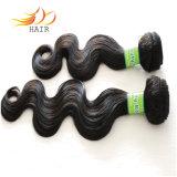 100% 7A Remyの毛はボディ波のビルマのバージンの毛を編む
