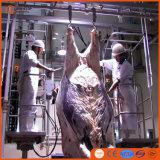 Strumentazione di macello del manzo della macchina di Dehiding del bestiame