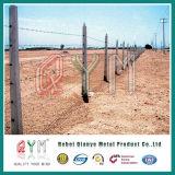 Гальванизированное сбывание загородки сетки колючей проволоки тюрьмы /PVC проволочной изгороди колючки Coated