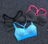 Seca rápidamente sostén deportivo para la Mujer/Dama, la ejecución de la ropa, el desgaste de Yoga