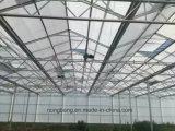 야채와 꽃 성장하고 있는을%s 유리제 온실