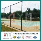 Гальванизированная загородка /Garden загородки звена цепи PVC Coated высокая