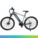 China-Großhandelspreis-Qualitäts-elektrisches Gebirgsfahrrad, Fahrrad des Berge mit hinterem Naben-Motor oder Bafang MITTLEREM Motor für Wahl