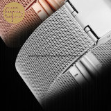 De Band van het Horloge van het Roestvrij staal van het Netwerk van het Embleem van de douane