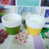 Zitronengras-Kerze-Glas-Garten-Laterne-Kerze für im Freien und Garten-Dekor