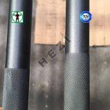 El aluminio de la técnica de la seguridad embroma la barra del Barbell para el uso de los niños