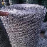Sextavado galvanizado. Wire Mesh/Frango paralela de malha de arame