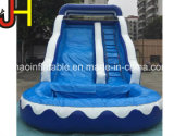 De reuze Opblaasbare Dia van het Water voor de Volwassen Gebruikte Dia van het Zwembad