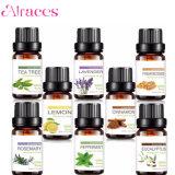 Top 8 de Aromaterapia Aceites Esenciales 100% puro de alta calidad DIFUSOR de ACEITES ESENCIALES aceite