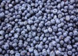 Heiße verkaufende neue Getreide-erstklassige Qualität gefrorene Blaubeeren