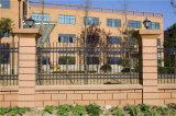Rete fissa residenziale 3-4 del giardino di obbligazione nera decorativa elegante di alta qualità