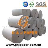 Mattpapier des gefäß-250GSM in der Bandspule-Größe