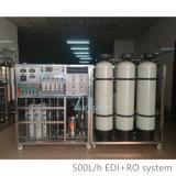 Mini 10000L industrial modificado para requisitos particulares por sistemas de tratamiento de aguas del RO del día con el filtro de la ósmosis reversa