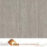 Moderner Entwurfs-rustikale Porzellan-Fliese für Fußboden (AJJD6073)