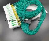 Faser Optik-Plastikkasten des PLC-Teiler-1X64 für Inhausnetz