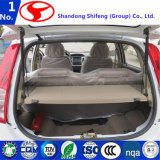 Automobili elettriche fatte in Cina