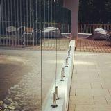 Piscina de cristal del pasamano de Frameless de la espita del acero inoxidable de la alta calidad que cerca diseño