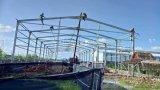 Casa profesional de las mercancías del bajo costo de la estructura de acero del diseño