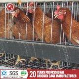Новой гальванизированные конструкцией клетки цыпленка слоя оборудования птицефермы/бройлера для Кении