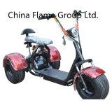 1000W 60V/20ah/30ahの電気チョッパーのバイク