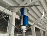 재생 가능 에너지 300W 수직 바람 발전기는 도매한다