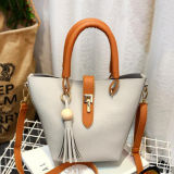 새로운 도착 색깔 충돌 술 숙녀 핸드백 견본 결박 어깨에 매는 가방 Sy8604