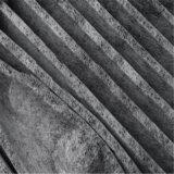 De Filter van de Lucht van de Cabine van de houtskool voor Doorwaadbare plaats cV6z-19n619-A CV6z19n619A