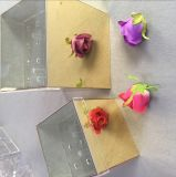 16 Rose Luruxy acrílico Espejo de oro Cuadro de flores