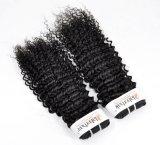 大広間(等級9A)のためのインドのねじれた巻き毛の加工されていないバージンの毛