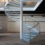 Modernes festes Holz-gewundenes Innentreppenhaus mit Rod-Geländer