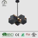Освещение нестандартной конструкции привесного светильника черного металла проекта декоративное
