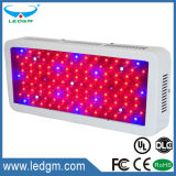 Hydroponics Red Blue Purple Color Public garden Shape 220-230W LED Grow Light