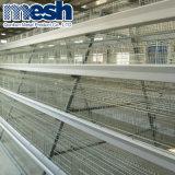 Птицеферме клетку с заводская цена