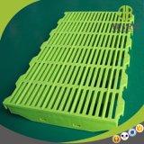 Goede Kwaliteit 400*600mm Plastic Populaire Vloer Gebruikt in Varkensfokkerij