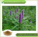 Chinese Mosla Herb Extract 10:1, Powder