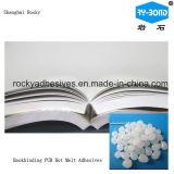 Colle chaude de fonte pour les livres obligatoires et les photos