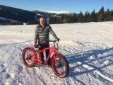 Hot popular playa de 26pulgadas Bicicleta eléctrica