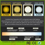 2017 간결한 6W (60W 할로겐 전구 동등물) E12 LED 초 전구