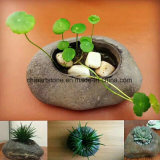 China pequena pia de pedra natural para vasos de flor