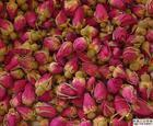 綿ローズの花のエキス10%-30%の紫外線ローズのポリフェノール