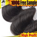 Cheveu brésilien chaud de Remy sur la vente